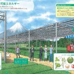茶畑ソーラーシェアリングが図鑑に載りました